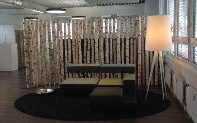 Birkentrennwand aus gereinigten und getrockneten Birkenstämmen