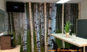 Birkenwand aus Dekobirkenstämmen