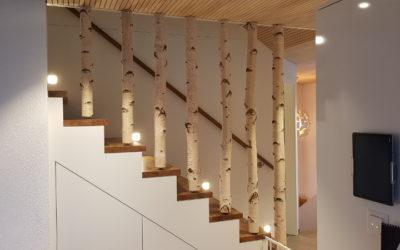Treppenbau mit Birkenstämmen