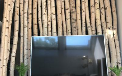 Abgetrennte Fernseh-Ecke mit Birkenstämmen