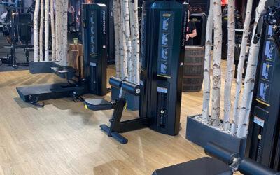 Birkenstämme als Raumteiler in Fitnessräumen
