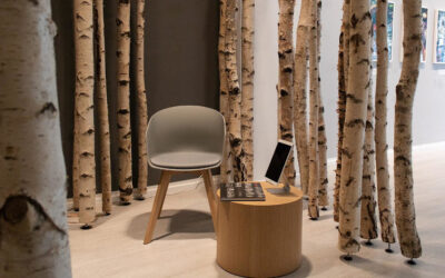 Birkenstämme als Raumteiler in Ausstellungen und Museen